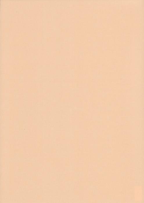 Карина персиковый , пр-во - Германия, прозрачность - полузатемняющая, категория - 1
