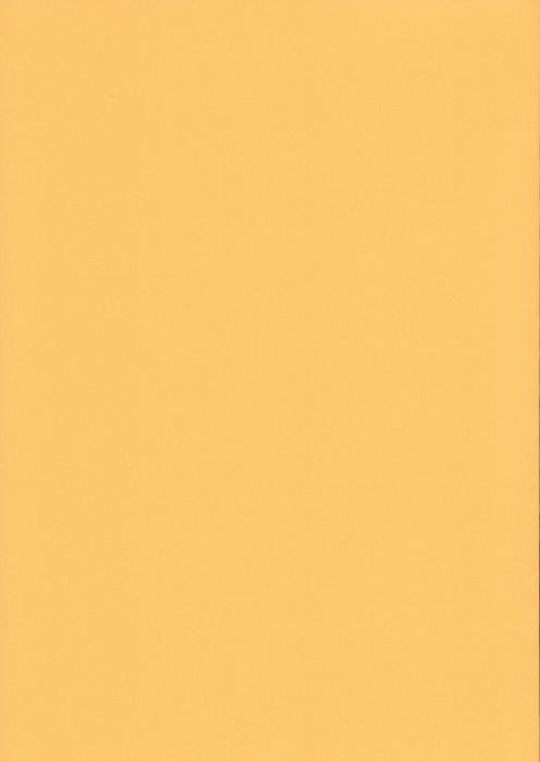 Карина светло-желтый , пр-во - Германия, прозрачность - полузатемняющая, категория - 1
