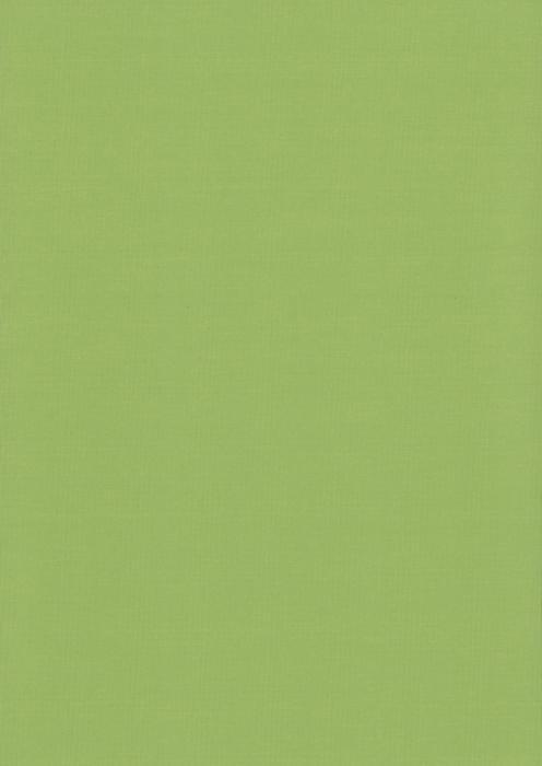 Карина светло-зеленый , пр-во - Германия, прозрачность - полузатемняющая, категория - 1