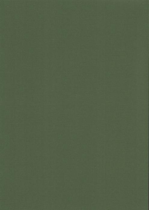 Карина темно-зеленыйий , пр-во - Германия, прозрачность - полузатемняющая, категория