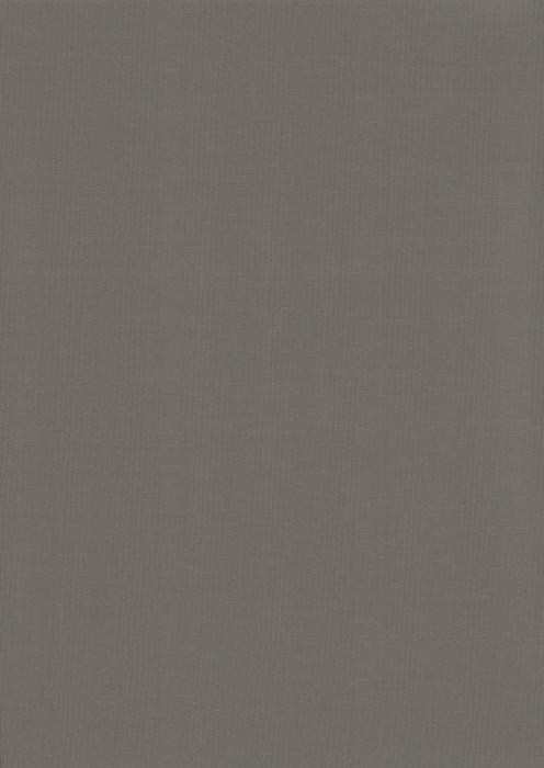 Карина темно-серый , пр-во - Германия, прозрачность - полузатемняющая, категория