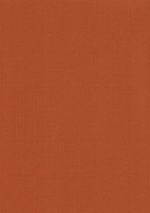 Карина терракотовый , пр-во - Германия, прозрачность - полузатемняющая, категория