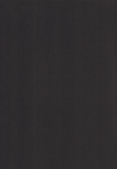 Карина черный , пр-во - Германия, прозрачность - полузатемняющая, категория