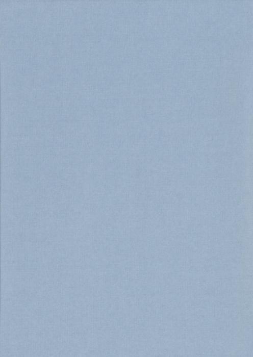 Карина блэкаут голубой , пр-во - Германия, прозрачность - непрозрачная, категория - 2