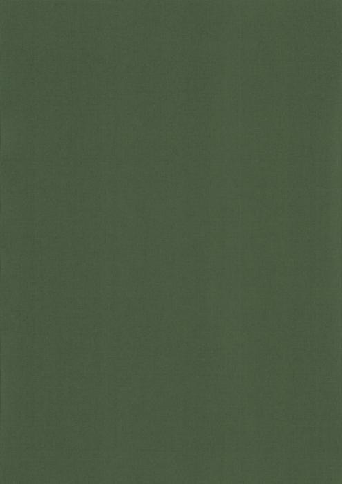 Карина блэкаут темно-зеленый , пр-во - Германия, прозрачность - непрозрачная, катег