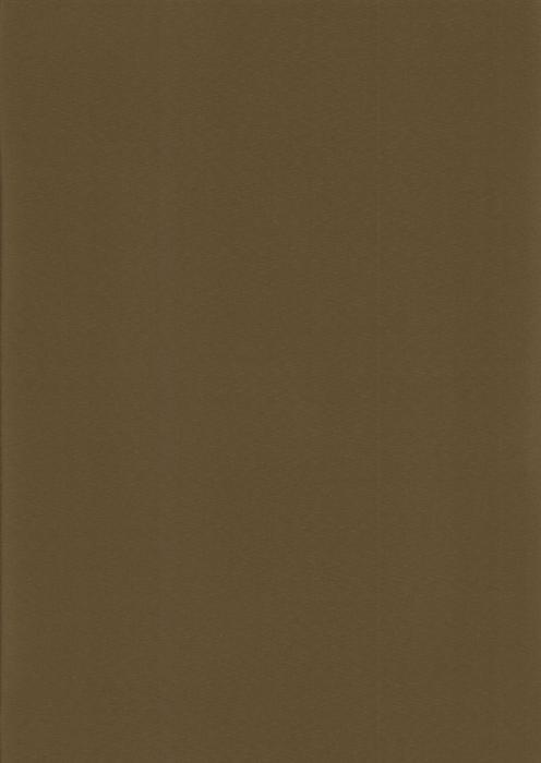 Респект блэкаут коричневый, пр-во - Китай, прозрачность - непрозрачная, категория - 1