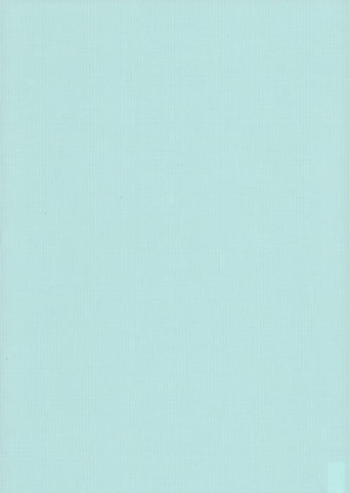 Карина голубой , пр-во - Германия, прозрачность - полузатемняющая, категория - 1