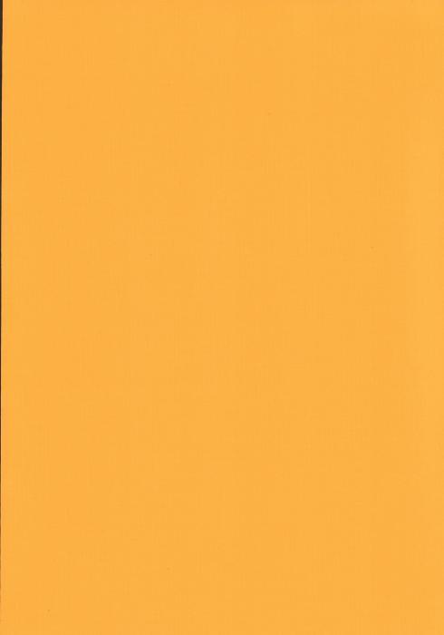 Карина желтый , пр-во - Германия, прозрачность - полузатемняющая, категория - 1